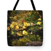 Autumn 2013 Tote Bag