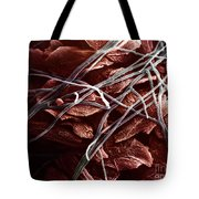 Candida And Epithelial Cells Tote Bag by David M. Phillips