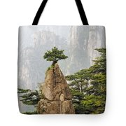 Chinese White Pine On Mt. Huangshan Tote Bag