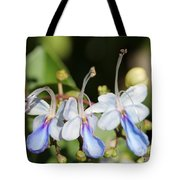 Clerodendrum Ugandense Or Blue Butterfly Bush Tote Bag