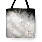 Dandelion Backlit Close Up Tote Bag