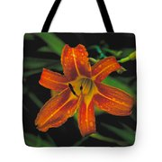 Day Lilly Tote Bag
