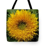 Dwarf Sunflower Named Teddy Bear Tote Bag