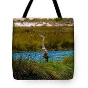 Florida Beach Scene Tote Bag