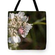 Flower Crab Spider Tote Bag