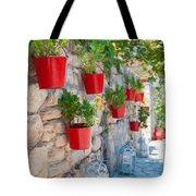 Flower Pots 2 Tote Bag