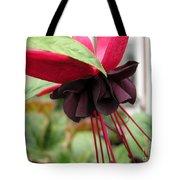 Fuchsia Named Roesse Blacky Tote Bag