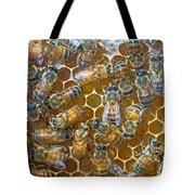 Honey Bees In Hive Tote Bag