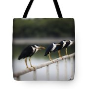 6 In A Row Tote Bag
