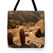 Indian Canyons Tote Bag