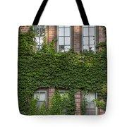 6 Ivy Windows Tote Bag