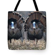 Jake Eastern Wild Turkeys Tote Bag