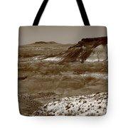 Painted Desert Tote Bag