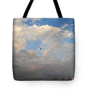 6- Rainbow And Seagull Tote Bag