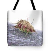 Scabies Mite Tote Bag