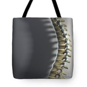 Spinal Anatomy Tote Bag