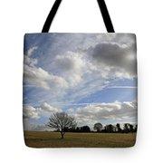 Spring Sunshine On Epsom Downs Surrey Tote Bag