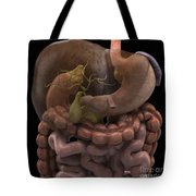The Gallbladder Tote Bag