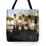 The Sacred Area Of Largo Argentina Tote Bag