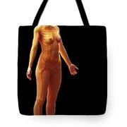 The Skeletal System Female Tote Bag
