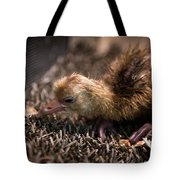Whooping Crane Reintroduction, Direct Tote Bag