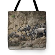 Wildebeests Crossing Mara River, Kenya Tote Bag