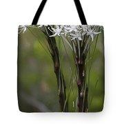 Beargrass  -  60603-32 Tote Bag