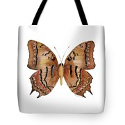 62 Galaxia Butterfly Tote Bag by Amy Kirkpatrick