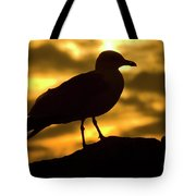 Nature And Travel Images Tote Bag