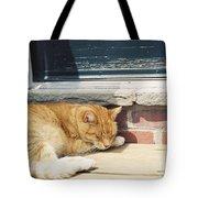 #665 03 Catnap  Tote Bag