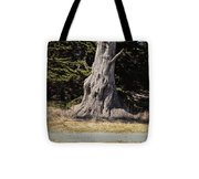 668 Det The Old Tree Tote Bag