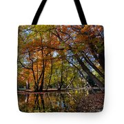 Alley With Falling Leaves In Fall Park Tote Bag