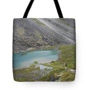 Backpacking In Alaska Talkeetna Tote Bag
