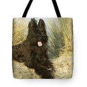 Briard Dog Tote Bag