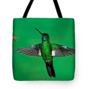 Buff-winged Starfrontlet Tote Bag