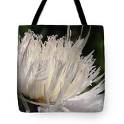 Centaurea Named The Bride Tote Bag
