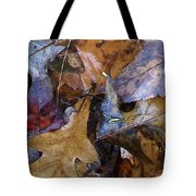 Colors Of The Fall Tote Bag