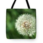 Dandelion Seed Head Tote Bag