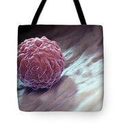 Embryonic Stem Cell Tote Bag