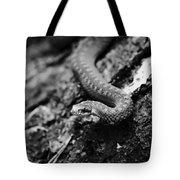 European Adder Tote Bag