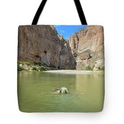 Exploring Big Bend National Park Tote Bag