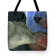 Halitosis Bacteria Tote Bag