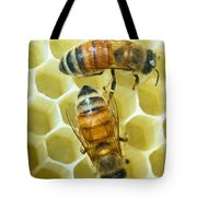 Honey Bees In Hive Tote Bag