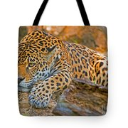 Jaguar Tote Bag