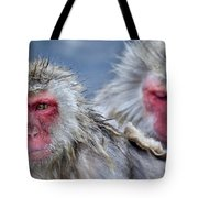 Japanese Macaques Tote Bag