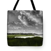 Southern Tall Marsh Grass Tote Bag