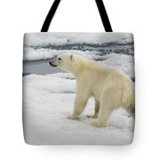 Polar Bear Crossing Ice Floe Tote Bag