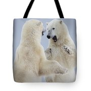 Polar Bears Play Fighting Along The Tote Bag