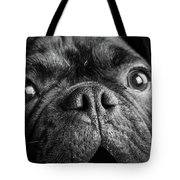 Portrait Of Pug Bulldog Mix Dog Tote Bag