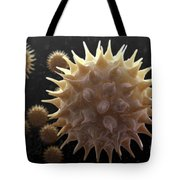 Sunflower Pollen Tote Bag